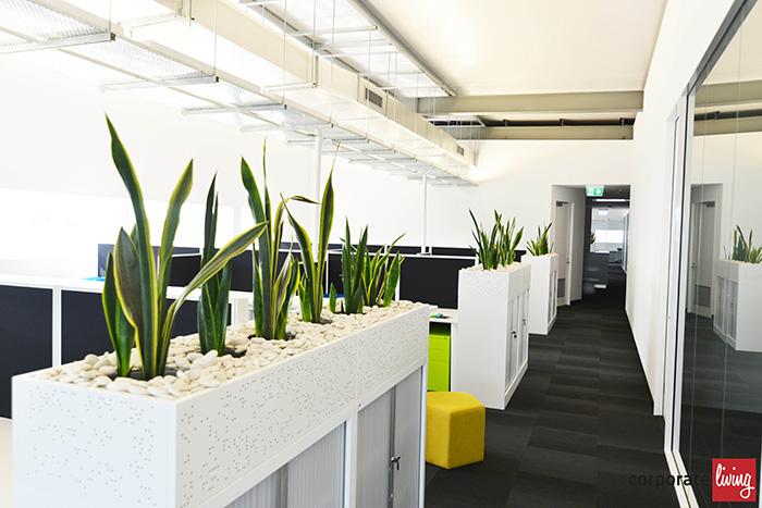 Kinspan_office_fitout_05