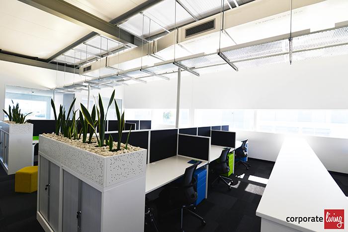 Kinspan_office_fitout_09